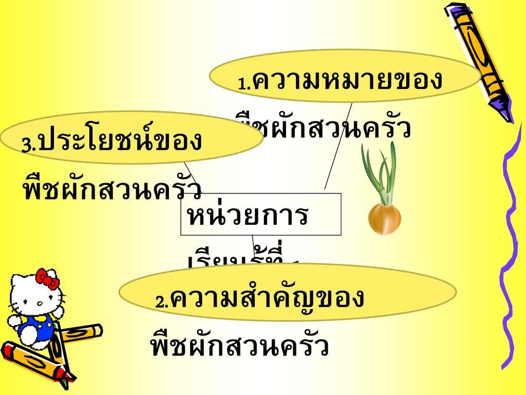 3.ประโยชน์ของพืชผักสวนครัว