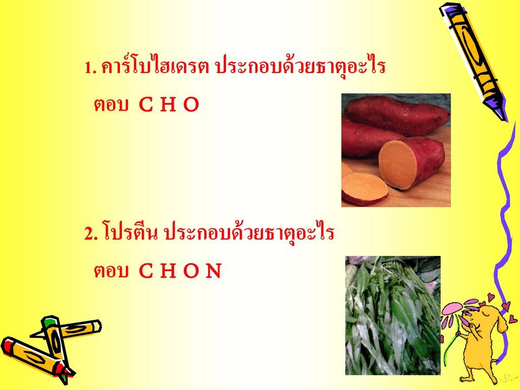 2. โปรตีน ประกอบด้วยธาตุอะไร ตอบ C H O N