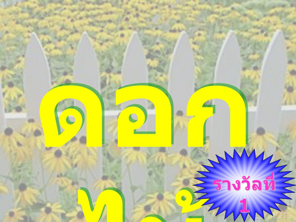 ดอกไม้ รางวัลที่ 1