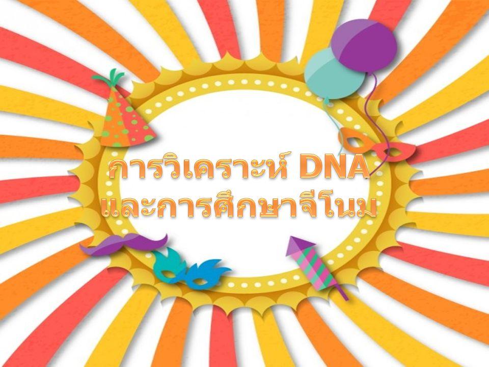 การวิเคราะห์ DNA และการศึกษาจีโนม
