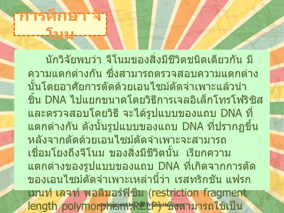 การศึกษา จีโนม