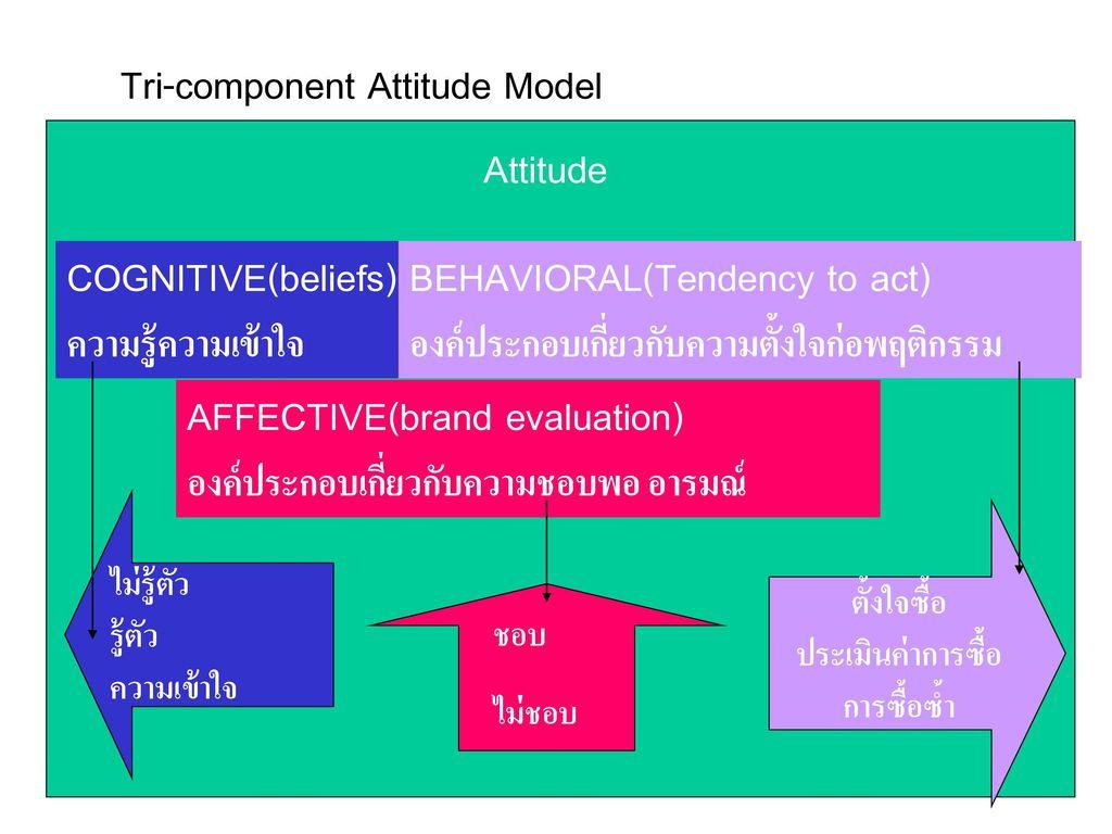 Tri-component Attitude Model
