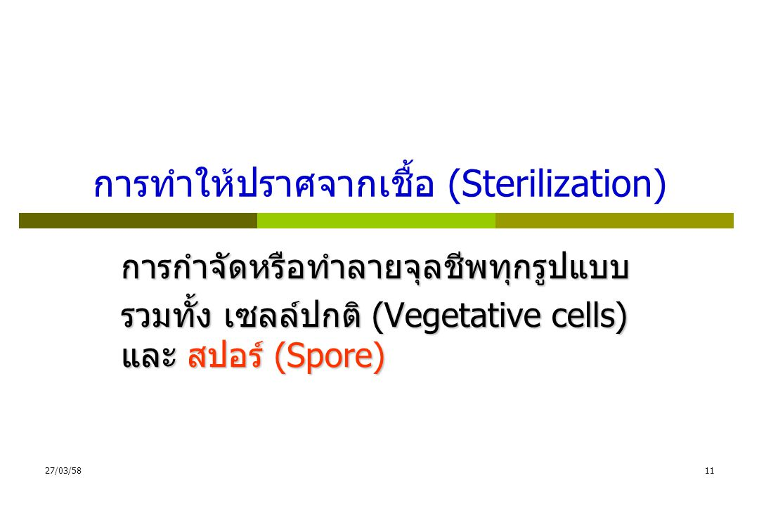 การทำให้ปราศจากเชื้อ (Sterilization)
