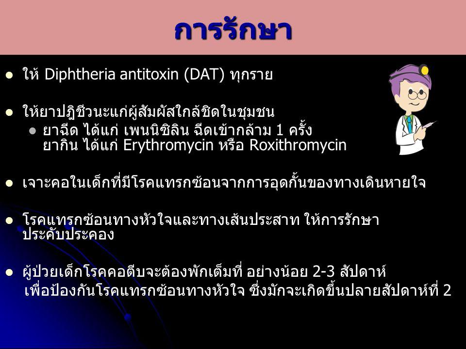 การรักษา ให้ Diphtheria antitoxin (DAT) ทุกราย