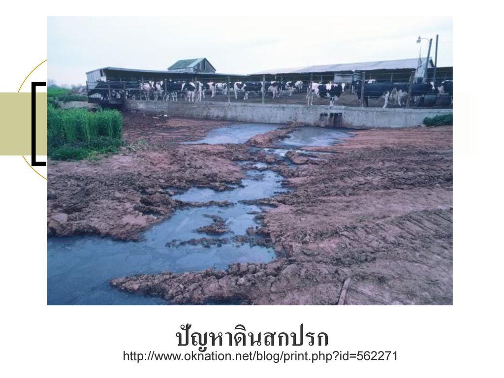ปัญหาดินสกปรก http://www.oknation.net/blog/print.php id=562271