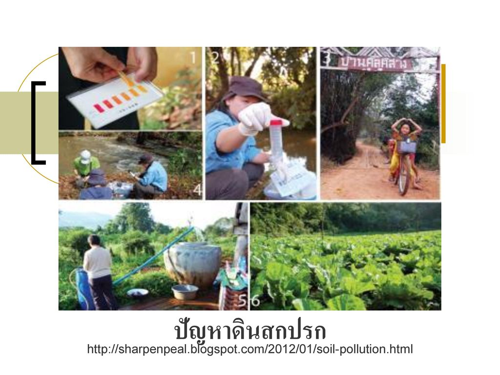 ปัญหาดินสกปรก http://sharpenpeal.blogspot.com/2012/01/soil-pollution.html