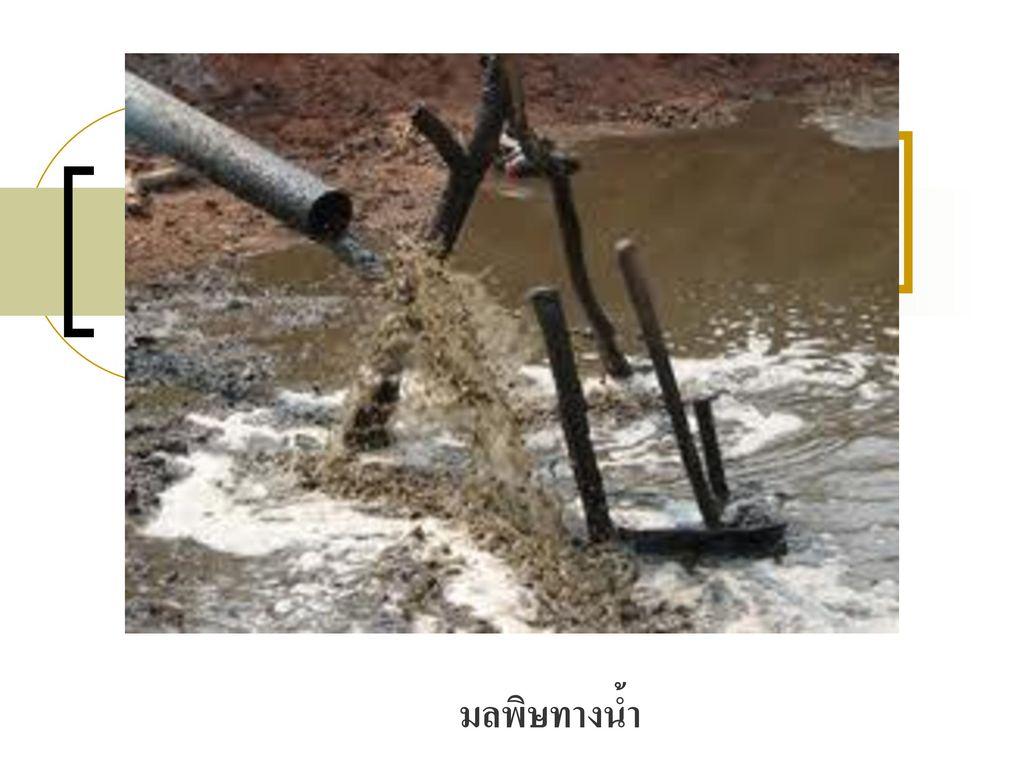 มลพิษทางน้ำ