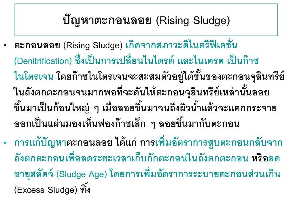ปัญหาตะกอนลอย (Rising Sludge)