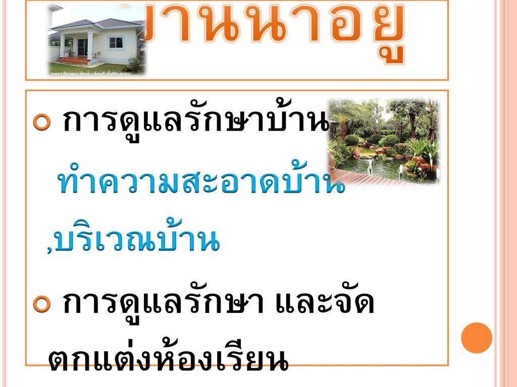บ้านน่าอยู่ การดูแลรักษาบ้าน ทำความสะอาดบ้าน ,บริเวณบ้าน