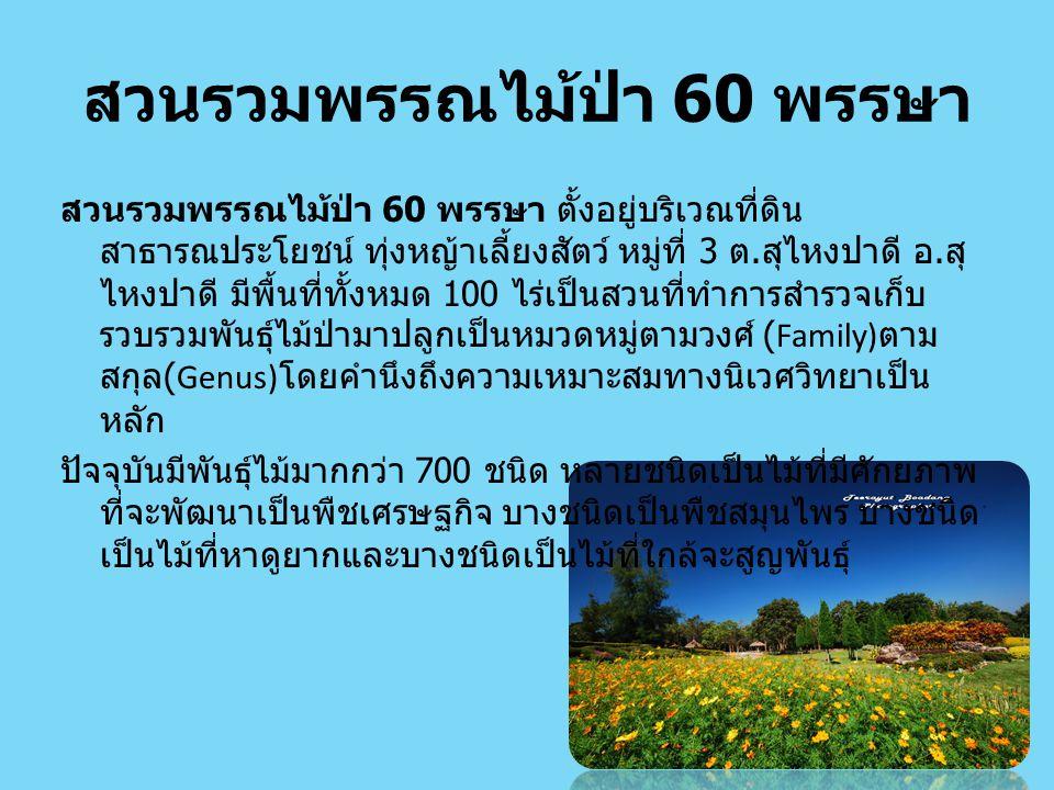 สวนรวมพรรณไม้ป่า 60 พรรษา
