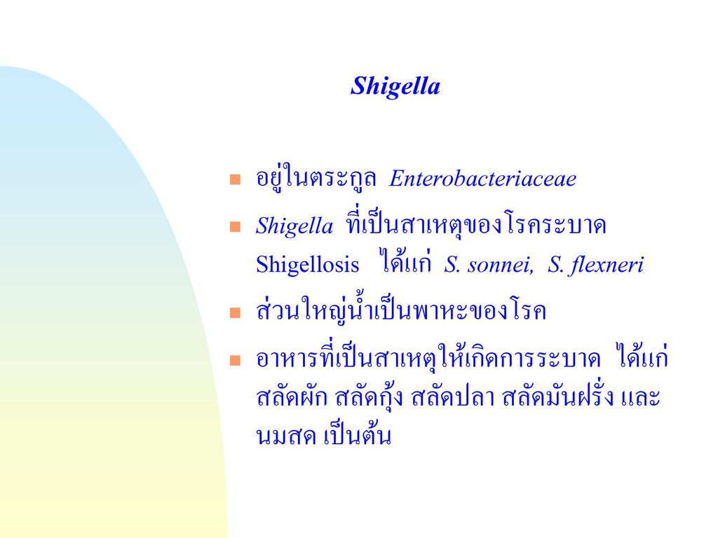 Shigella อยู่ในตระกูล Enterobacteriaceae