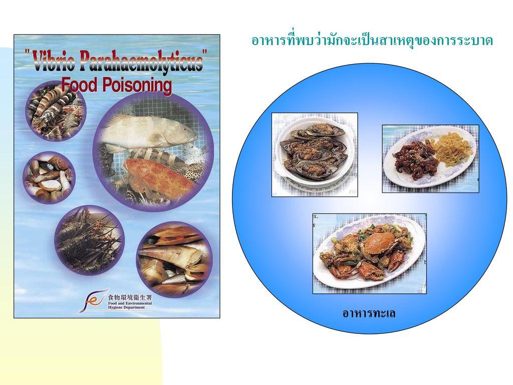 อาหารที่พบว่ามักจะเป็นสาเหตุของการระบาด