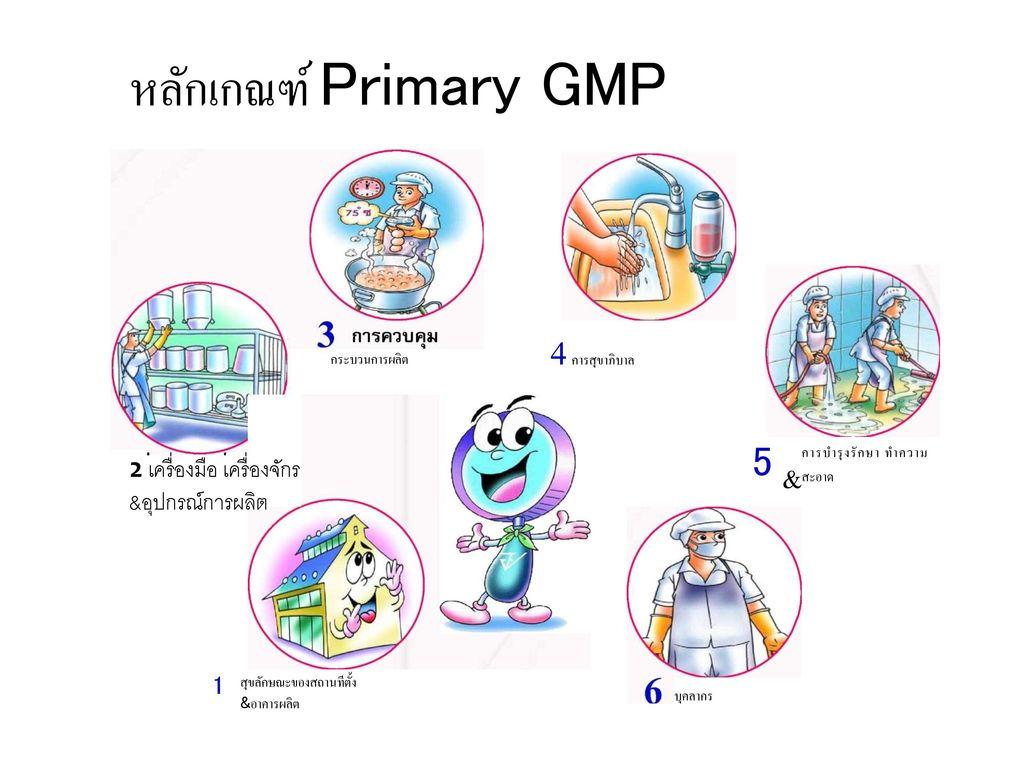 หลักเกณฑ์ Primary GMP 4 การสุขาภิบาล 5 2 เครื่องมือ เครื่องจักร