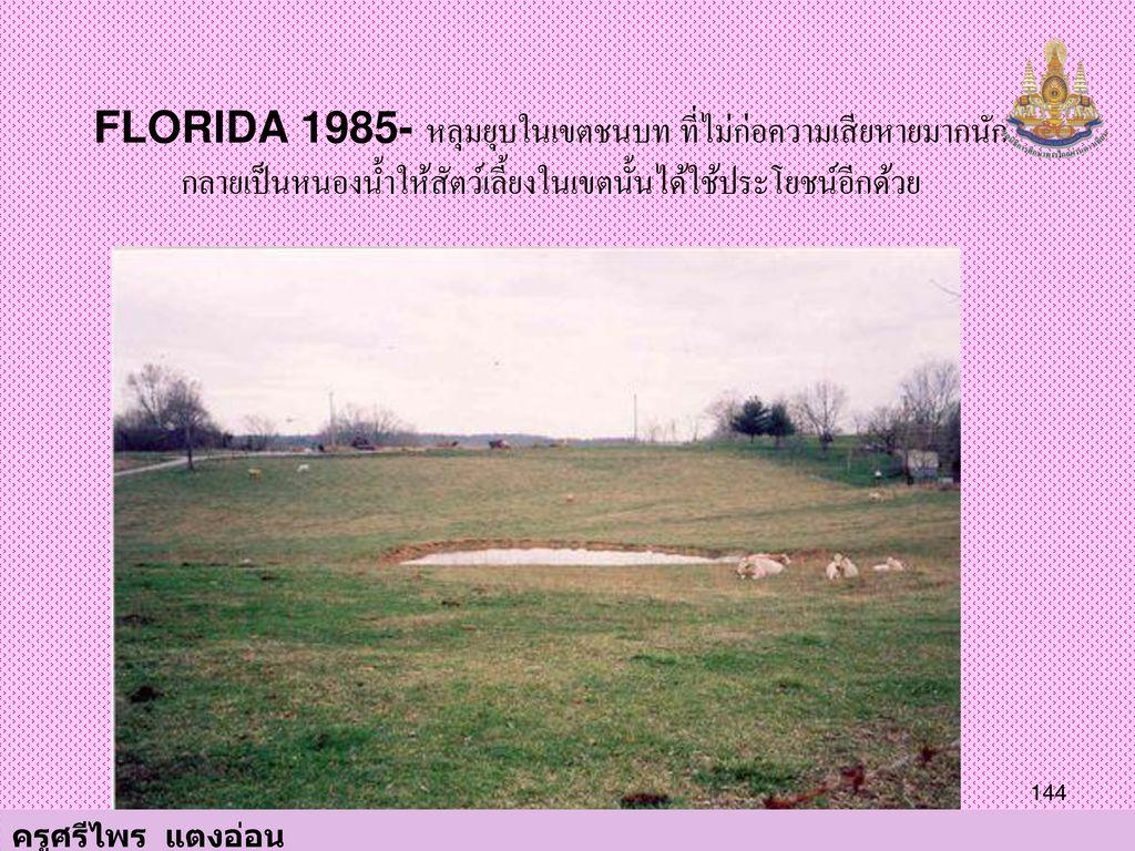 FLORIDA 1985- หลุมยุบในเขตชนบท ที่ไม่ก่อความเสียหายมากนัก กลายเป็นหนองน้ำให้สัตว์เลี้ยงในเขตนั้นได้ใช้ประโยชน์อีกด้วย