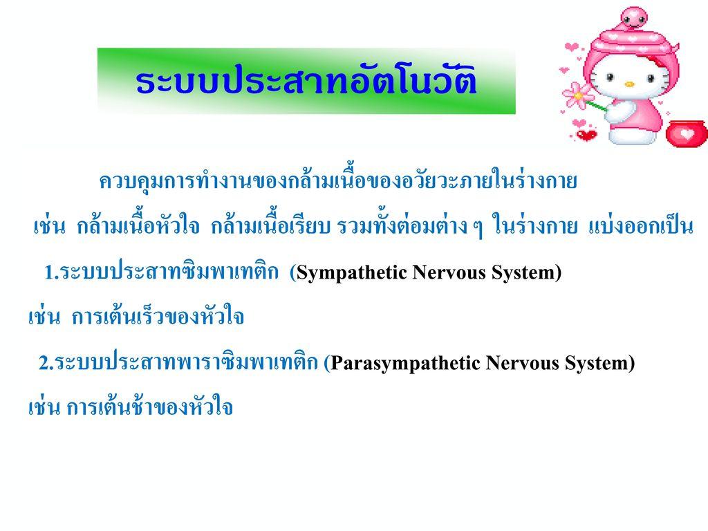 1. ระบบประสาทสวนกลาง (CNS : Central Nervous System) ระบบประสาทสวนกลางประกอบดวยสมอง และไขสันหลัง