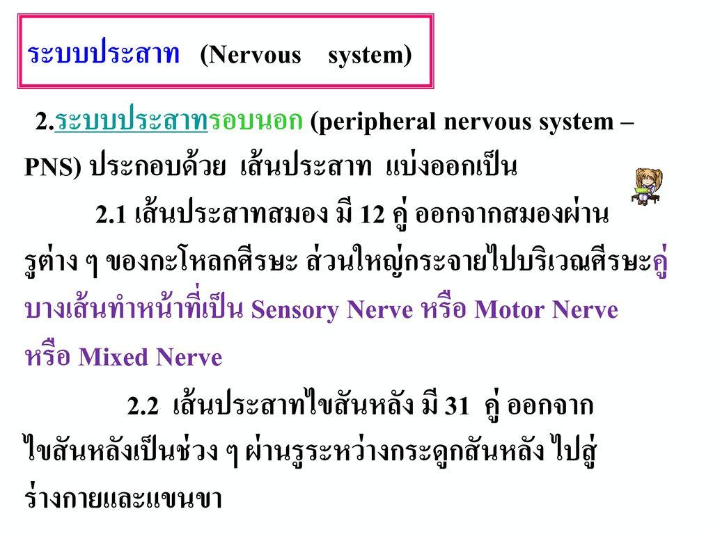 ระบบประสาทโซมาติก ทำทำงานตามคำสั่งของสมองและไขสันหลัง เกิดกับ