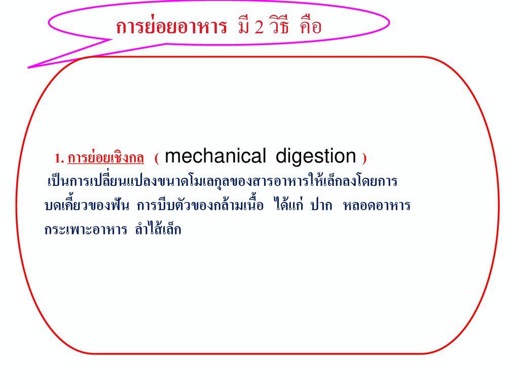 การย่อยอาหาร (digestion)