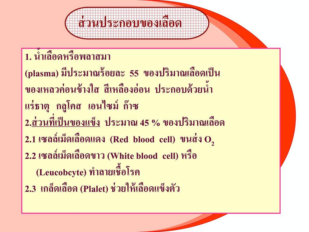 2.3.หลอดเลือดฝอย (Capillary)