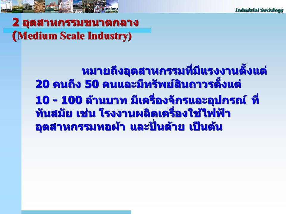 2 อุตสาหกรรมขนาดกลาง (Medium Scale Industry)