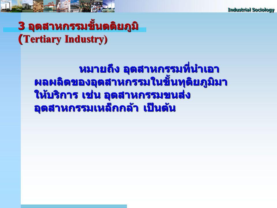 3 อุตสาหกรรมขั้นตติยภูมิ (Tertiary Industry)