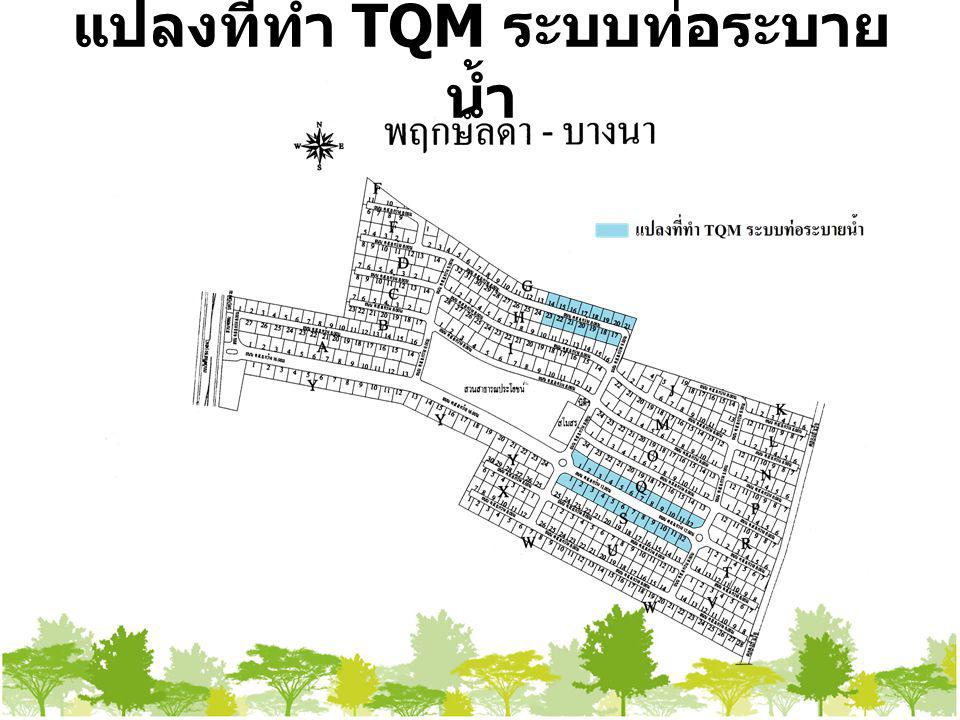 แปลงที่ทำ TQM ระบบท่อระบายน้ำ