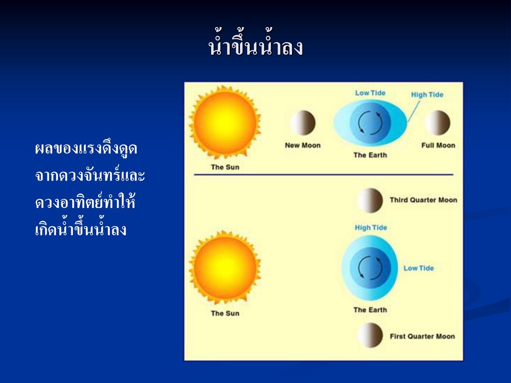 น้ำขึ้นน้ำลง ผลของแรงดึงดูดจากดวงจันทร์และดวงอาทิตย์ทำให้เกิดน้ำขึ้นน้ำลง