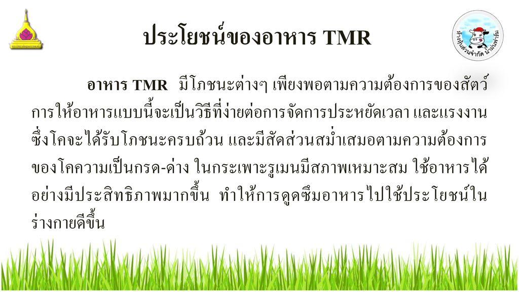 ประโยชน์ของอาหาร TMR