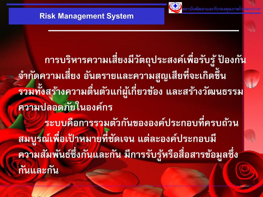 Risk Management System