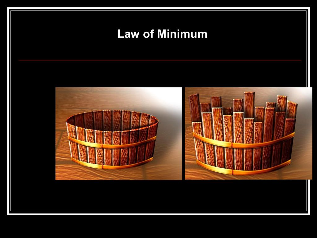 Law of Minimum