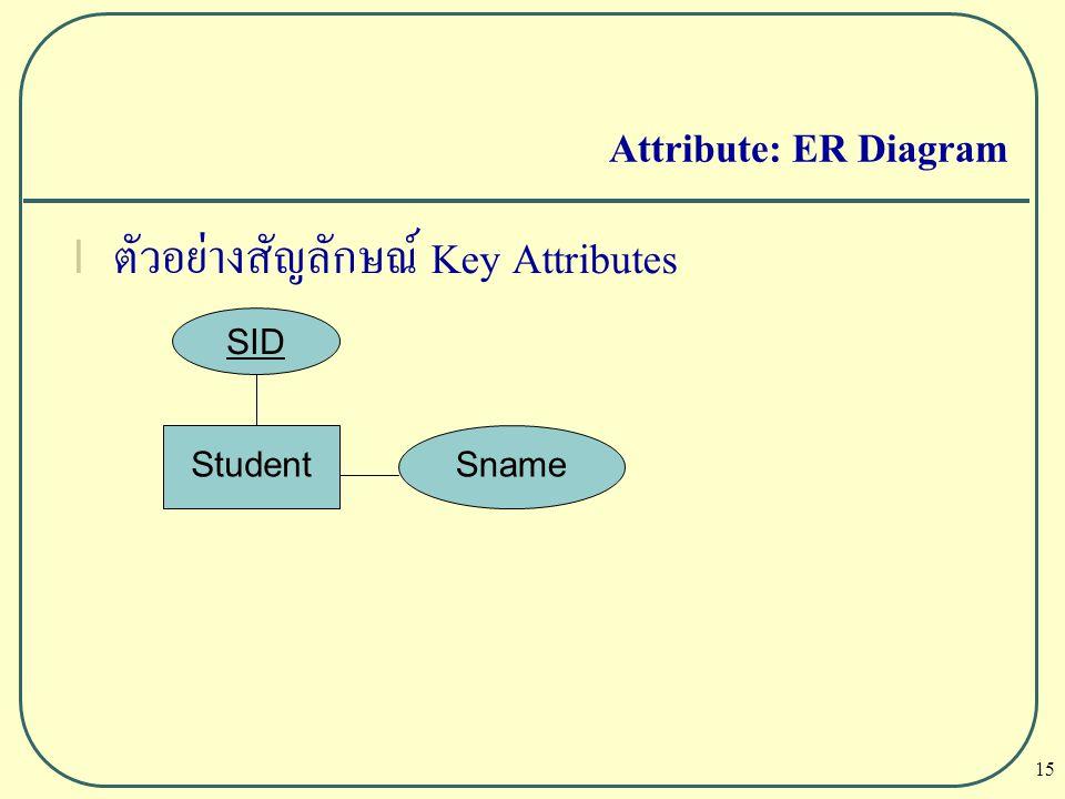ตัวอย่างสัญลักษณ์ Key Attributes