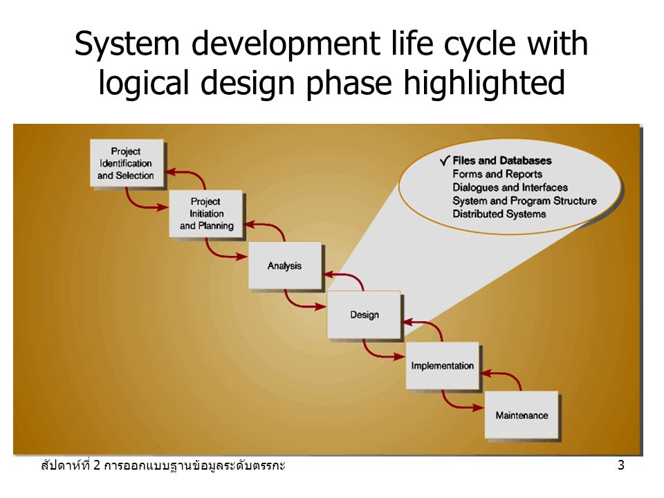 System development life cycle with logical design phase highlighted