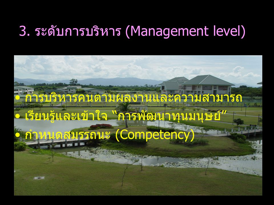 3. ระดับการบริหาร (Management level)