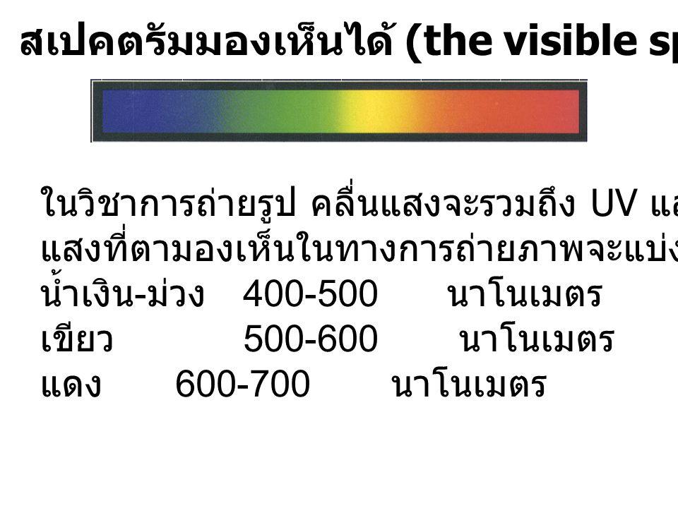 สเปคตรัมมองเห็นได้ (the visible spectrum)