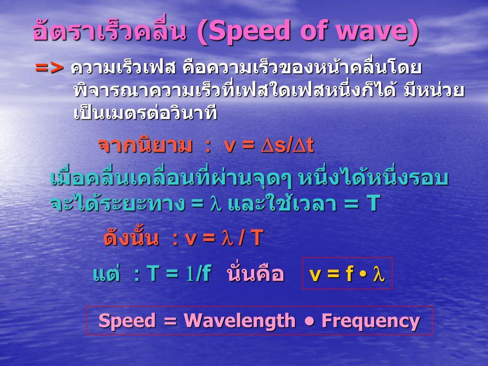 อัตราเร็วคลื่น (Speed of wave)