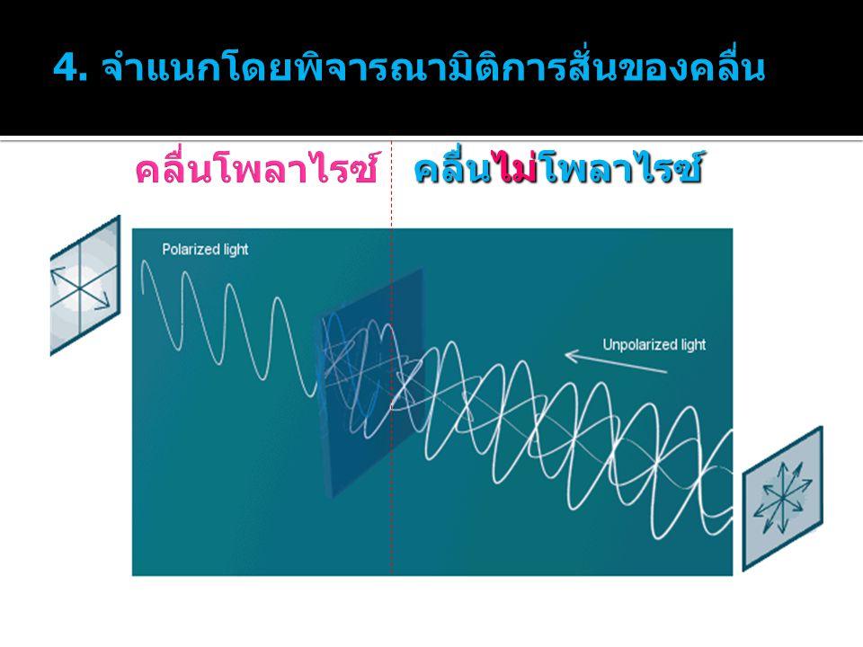 4. จำแนกโดยพิจารณามิติการสั่นของคลื่น
