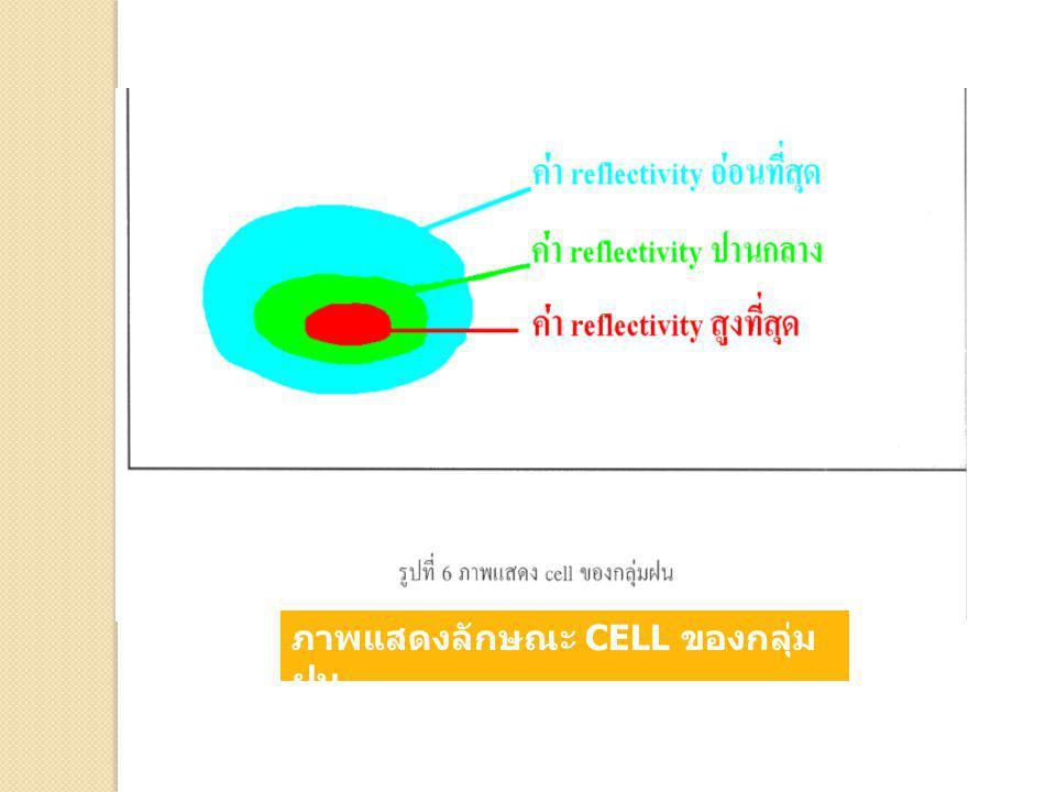 ภาพแสดงลักษณะ CELL ของกลุ่มฝน