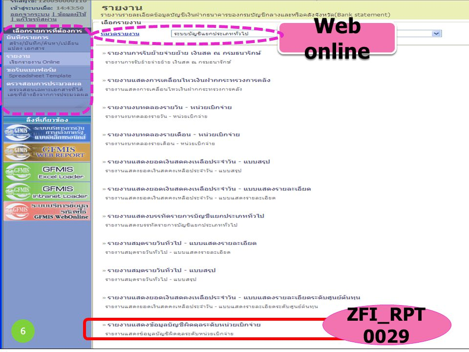 Web online ZFI_RPT0029 6