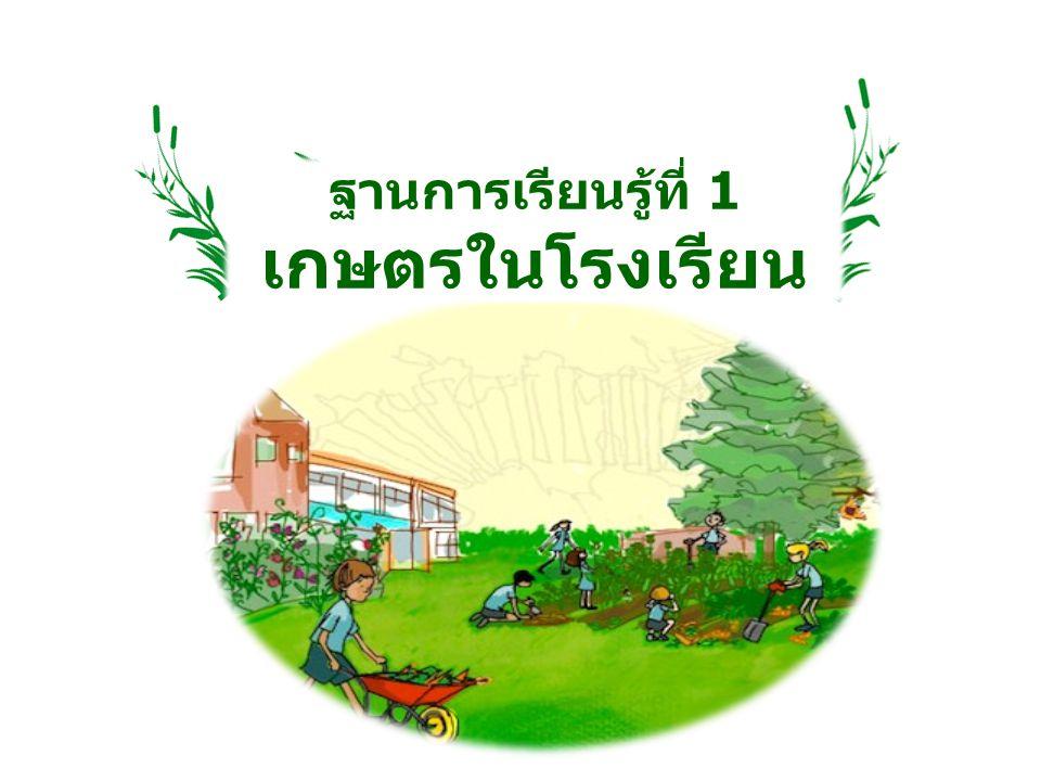 ฐานการเรียนรู้ที่ 1 เกษตรในโรงเรียน