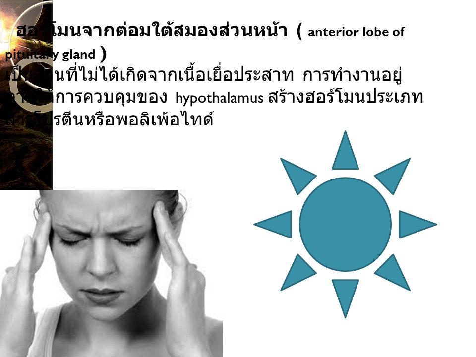 ฮอร์โมนจากต่อมใต้สมองส่วนหน้า ( anterior lobe of pituitary gland ) เป็นส่วนที่ไม่ได้เกิดจากเนื้อเยื่อประสาท การทำงานอยู่ภายใต้การควบคุมของ hypothalamus สร้างฮอร์โมนประเภทสารโปรตีนหรือพอลิเพ้อไทด์