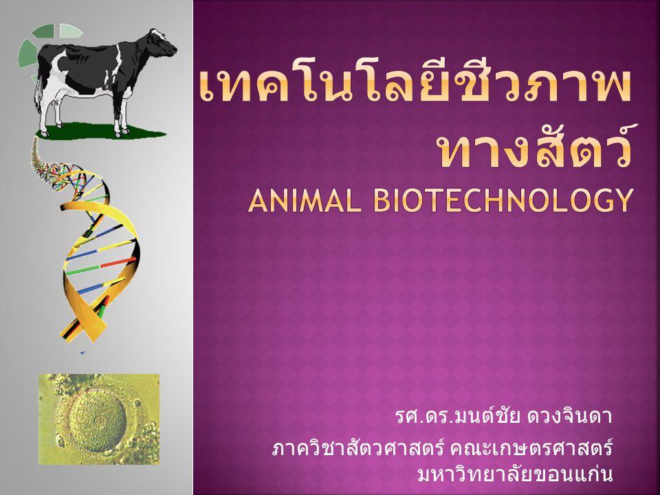 เทคโนโลยีชีวภาพทางสัตว์ Animal biotechnology
