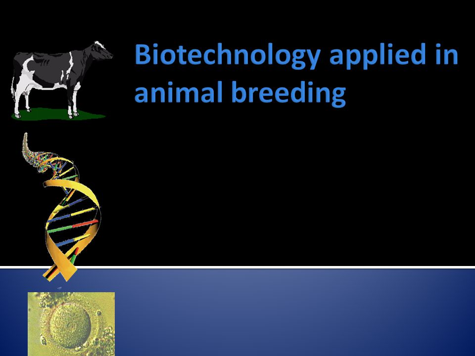 Biotechnology applied in animal breeding