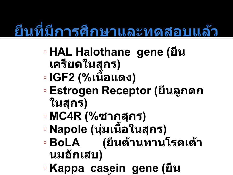 ยีนที่มีการศึกษาและทดสอบแล้ว