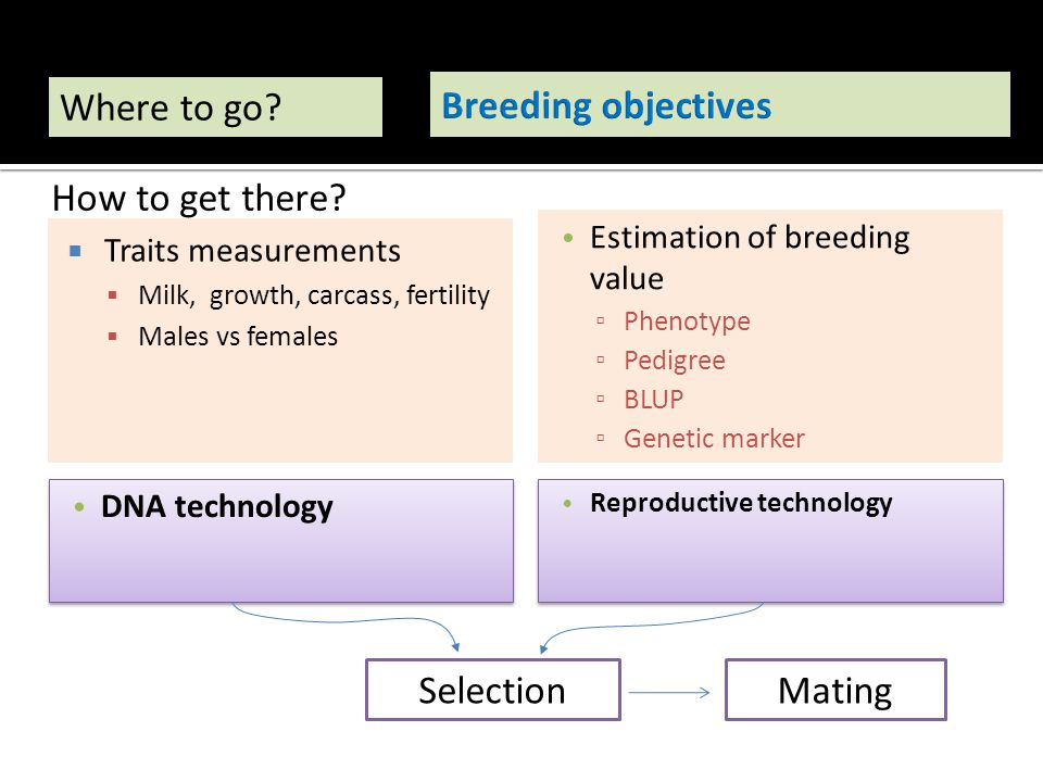 Where to go Breeding objectives How to get there Selection Mating