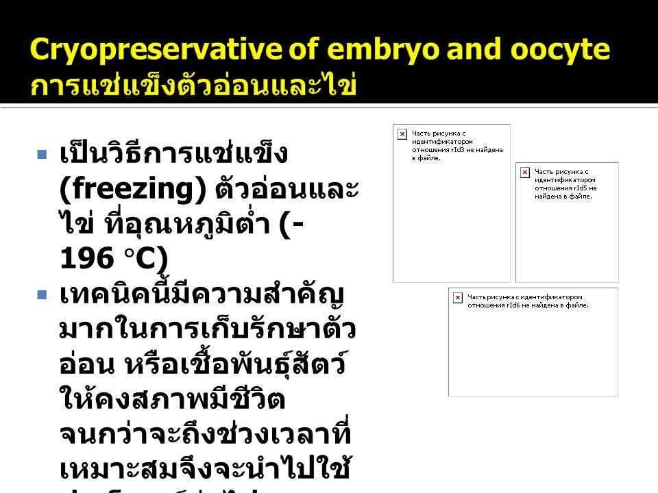 Cryopreservative of embryo and oocyte การแช่แข็งตัวอ่อนและไข่