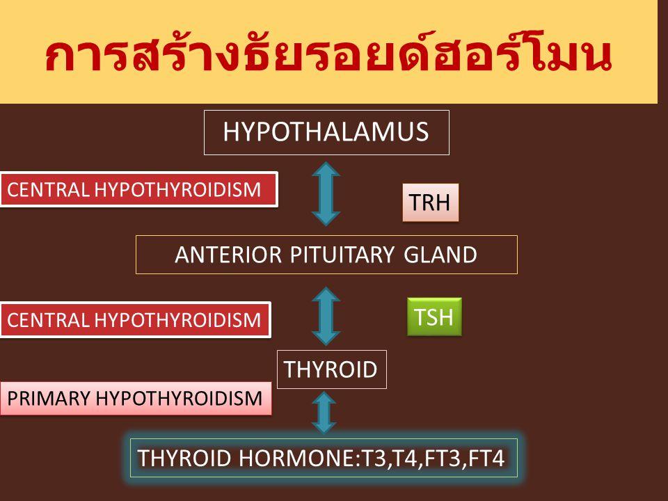 การสร้างธัยรอยด์ฮอร์โมน