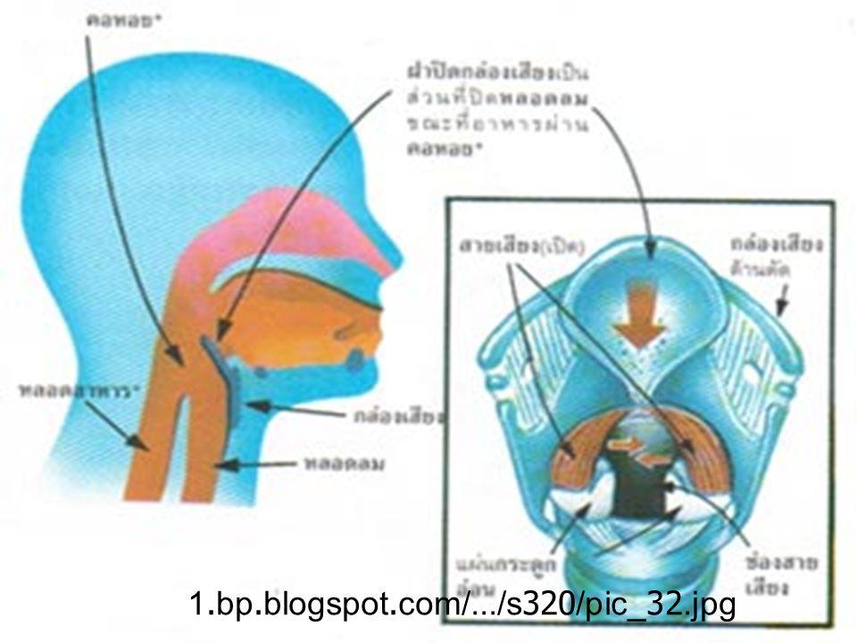1.bp.blogspot.com/.../s320/pic_32.jpg