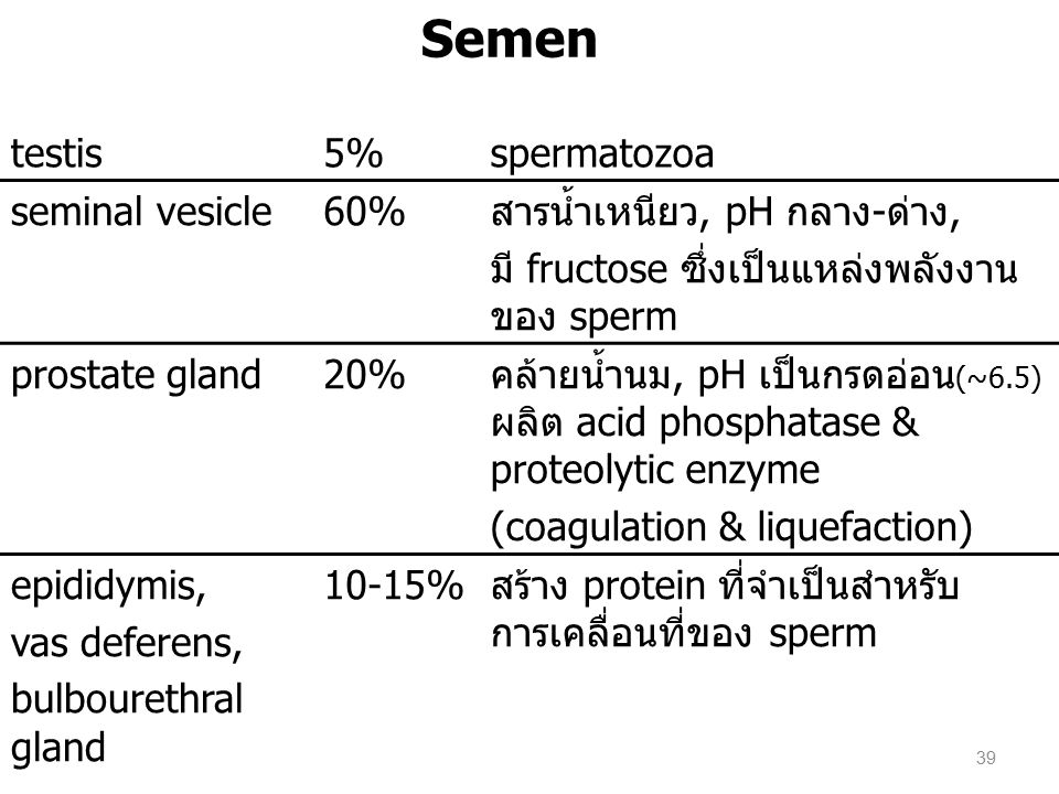 Semen testis 5% spermatozoa seminal vesicle 60%
