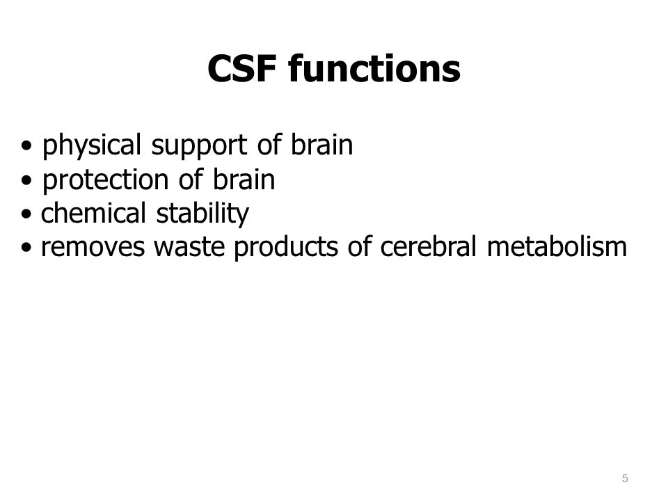 CSF functions physical support of brain protection of brain