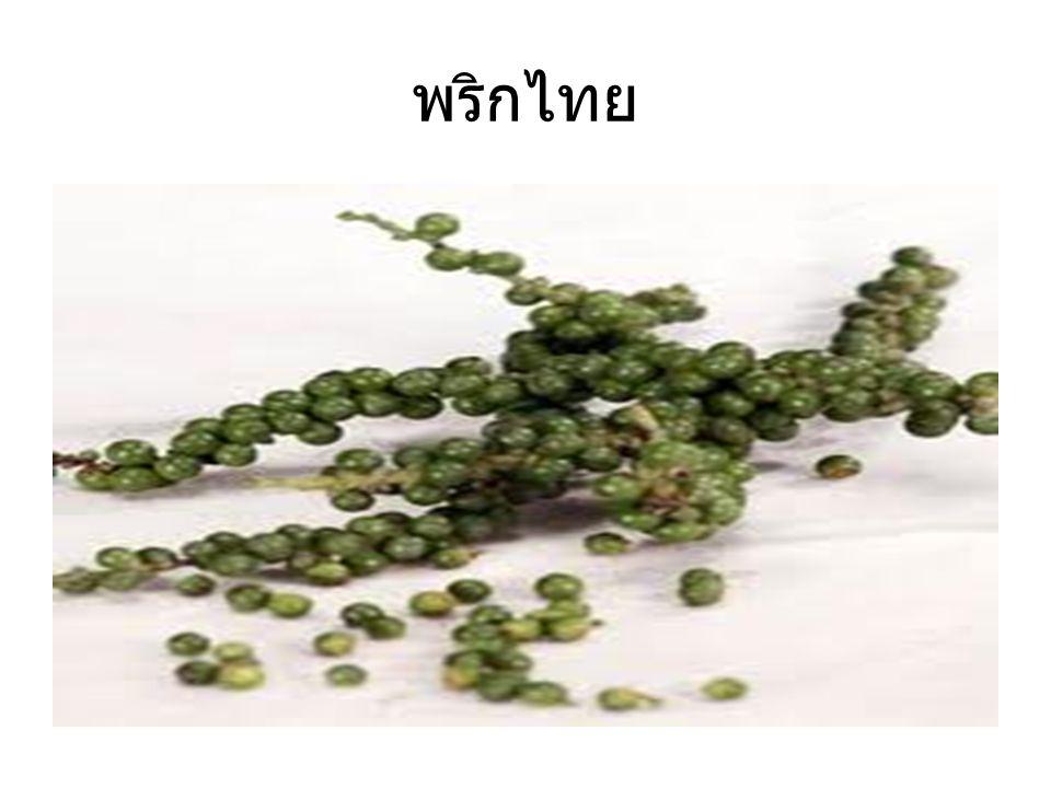 พริกไทย