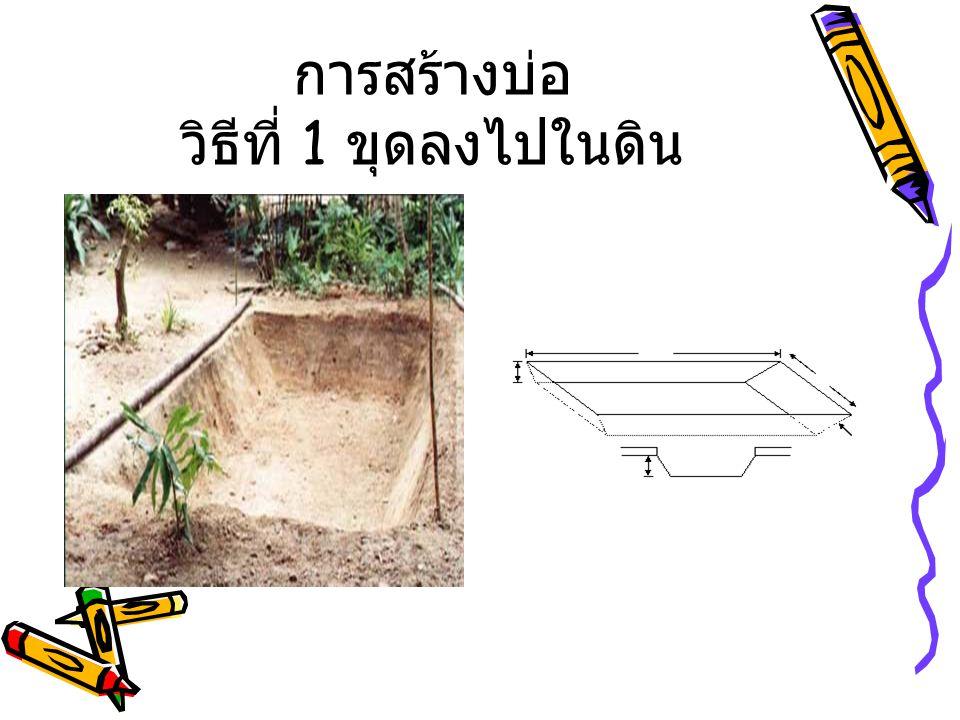 การสร้างบ่อ วิธีที่ 1 ขุดลงไปในดิน